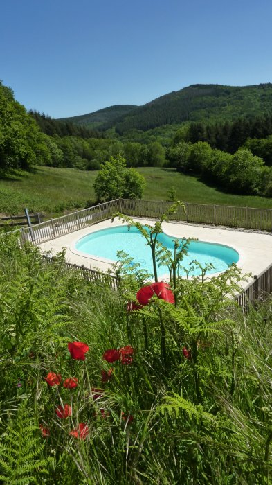 Camping Pool France