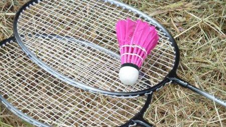badminton in the summer