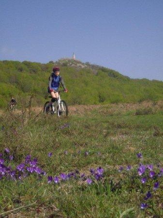 fietsvakantie Frankrijk