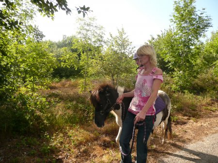 Même les plus jeunes coureurs Il ya des poneys Shetland à louer, où vous pourrez partir en randonnée avec.