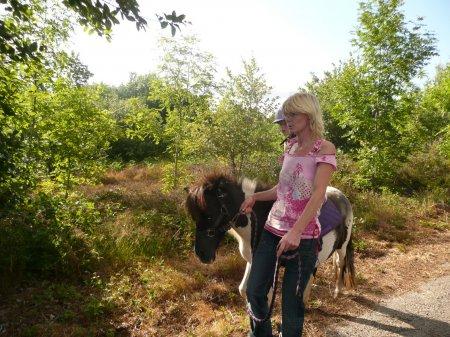 pony tours
